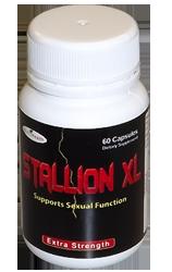stallionxl